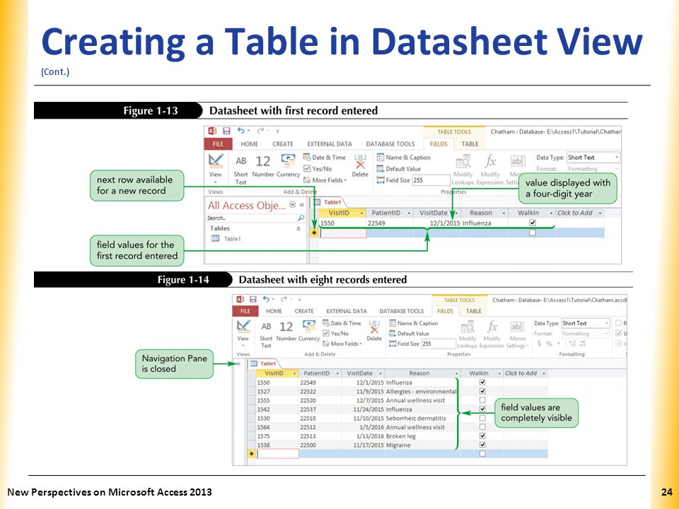 Creating a Table in Datasheet View (Cont.)