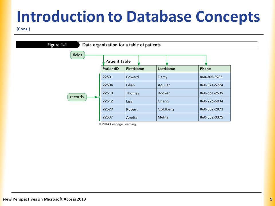 Introduction to Database Concepts (Cont.)