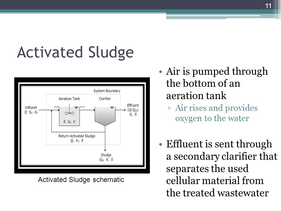 Activated Sludge Air is pumped through the bottom of an aeration tank