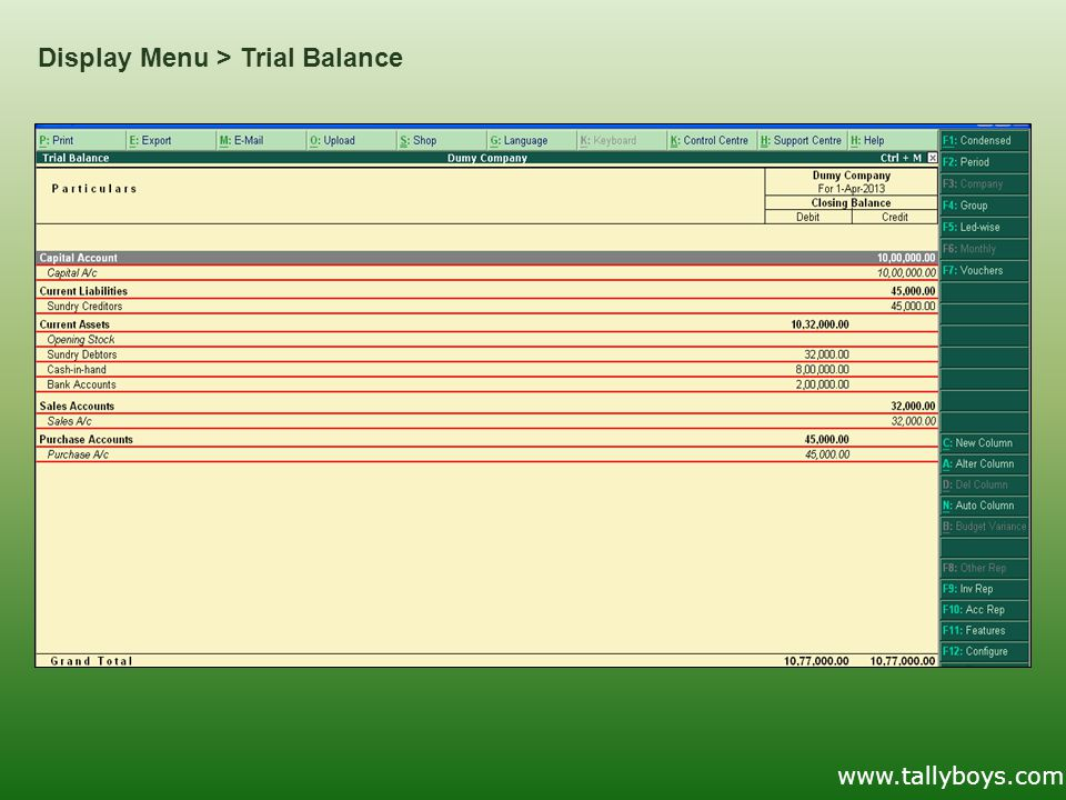 Display Menu > Trial Balance