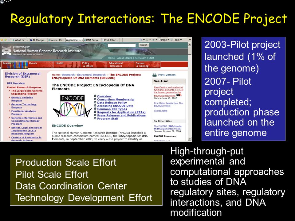 Regulatory Interactions: The ENCODE Project