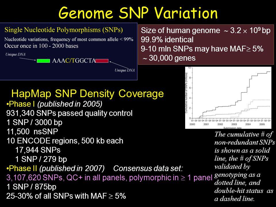 HapMap SNP Density Coverage
