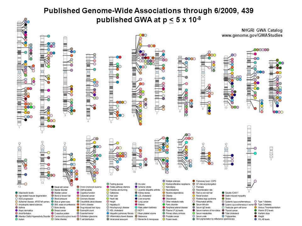 Published Genome-Wide Associations through 6/2009, 439 published GWA at p < 5 x 10-8