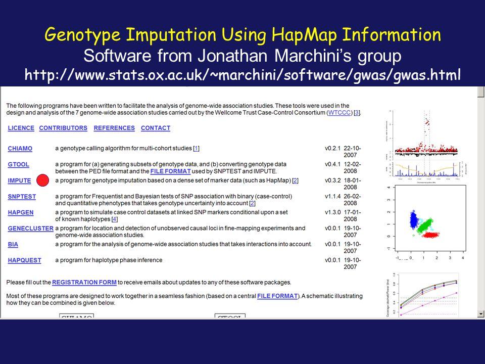 Genotype Imputation Using HapMap Information