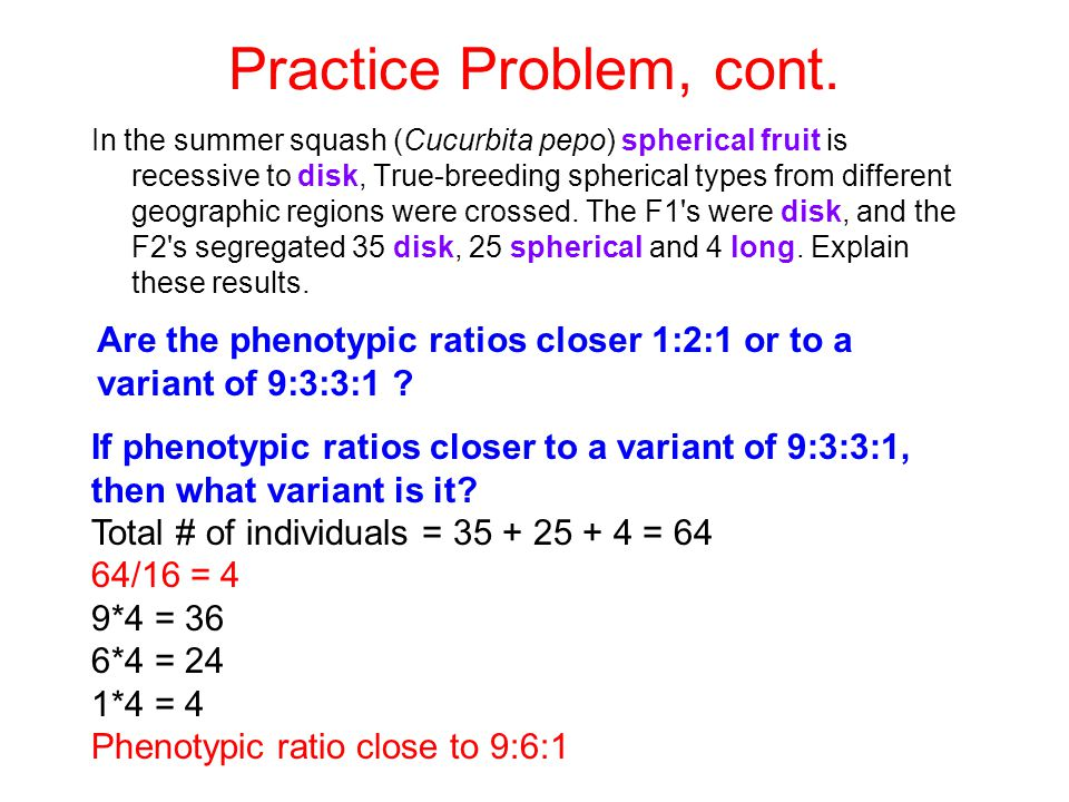 Practice Problem, cont.