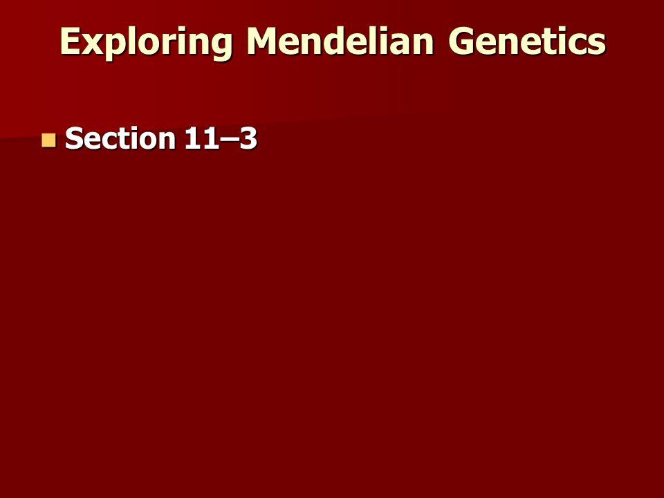 Exploring Mendelian Genetics