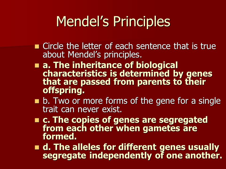 Mendel's Principles Circle the letter of each sentence that is true about Mendel's principles.
