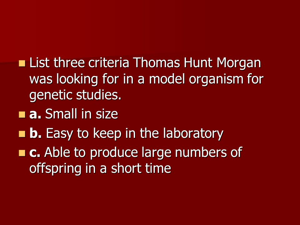 List three criteria Thomas Hunt Morgan was looking for in a model organism for genetic studies.
