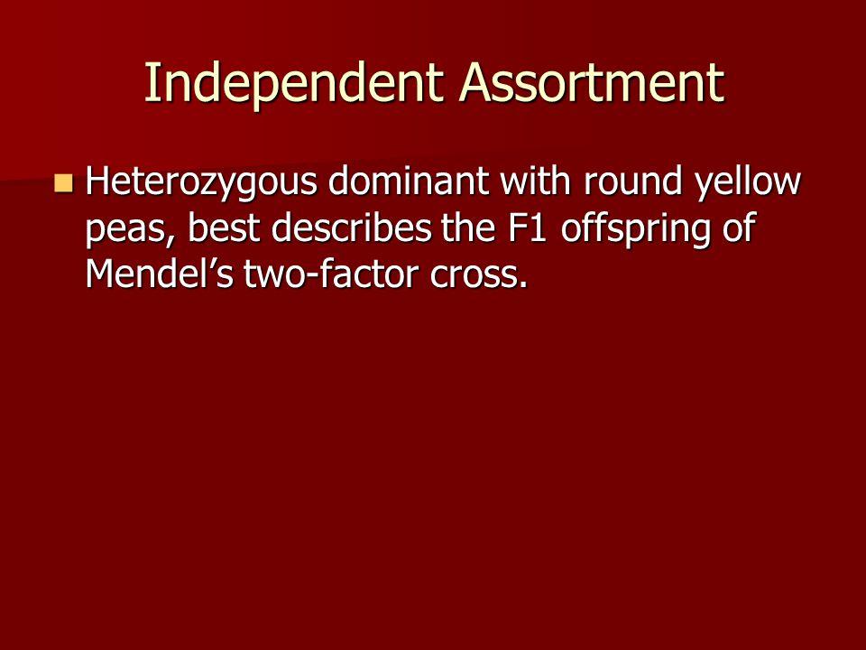 Independent Assortment