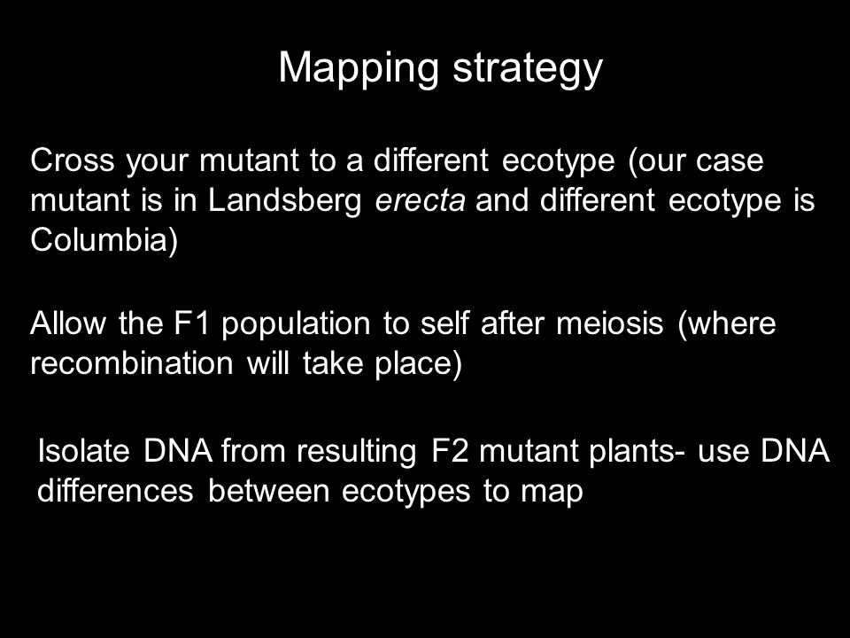 Mapping strategy Cross your mutant to a different ecotype (our case