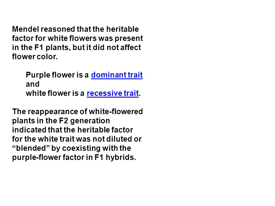 Mendel reasoned that the heritable factor for white flowers was present in the F1 plants, but it did not affect flower color.