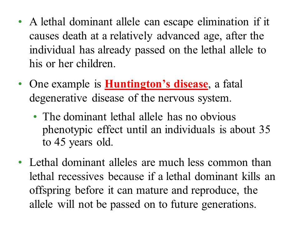 A lethal dominant allele can escape elimination if it causes death at a relatively advanced age, after the individual has already passed on the lethal allele to his or her children.