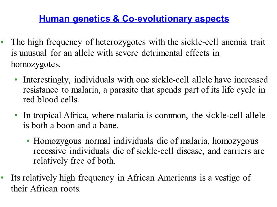 Human genetics & Co-evolutionary aspects