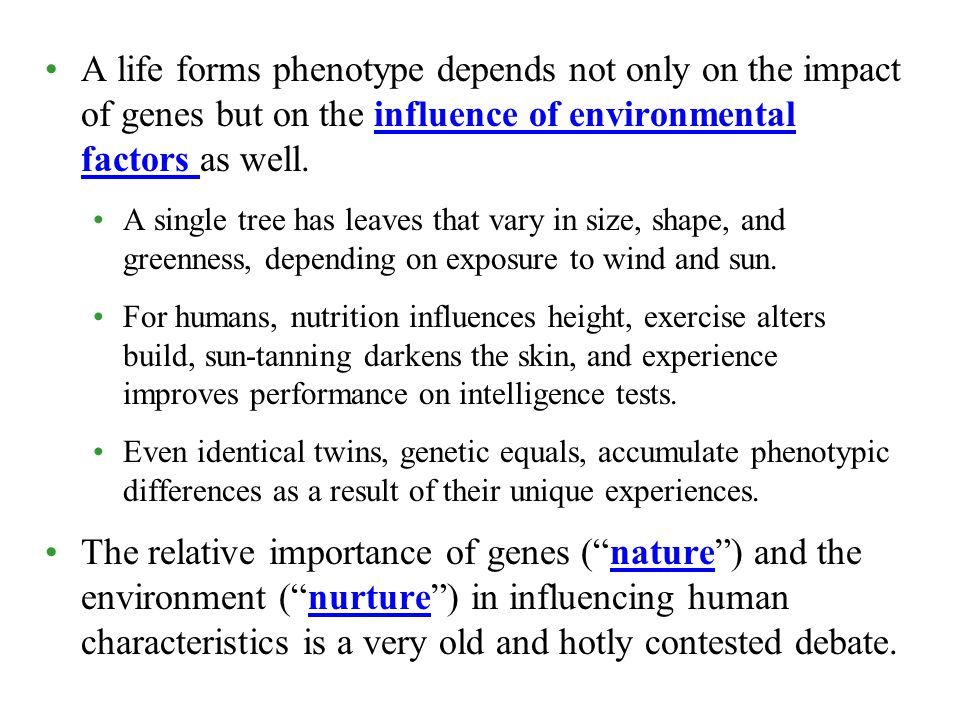 A life forms phenotype depends not only on the impact of genes but on the influence of environmental factors as well.