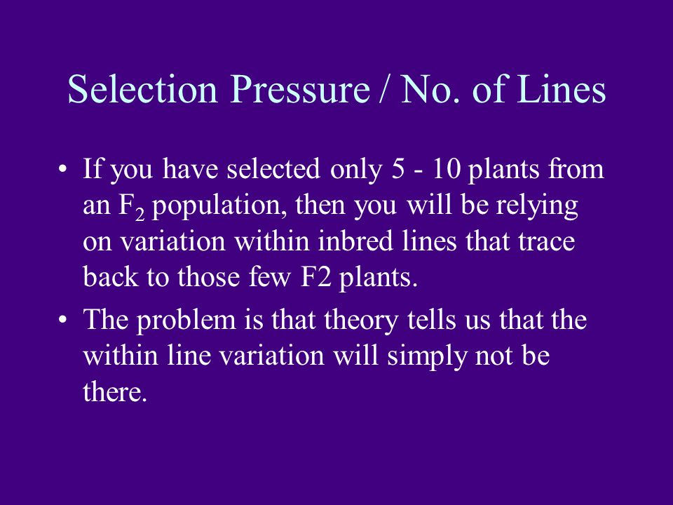 Selection Pressure / No. of Lines