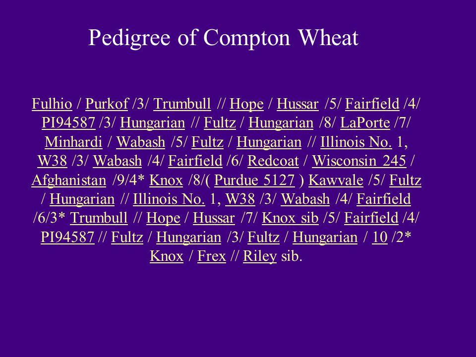 Pedigree of Compton Wheat