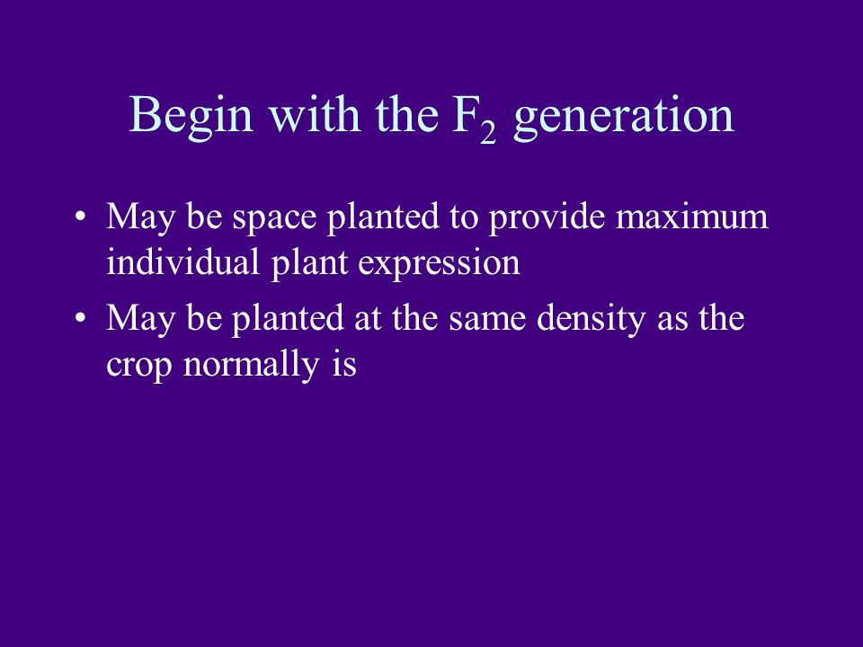 Begin with the F2 generation