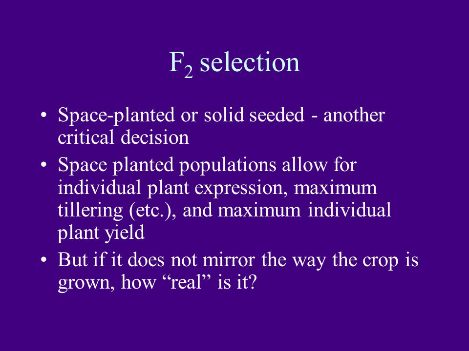 F2 selection Space-planted or solid seeded - another critical decision