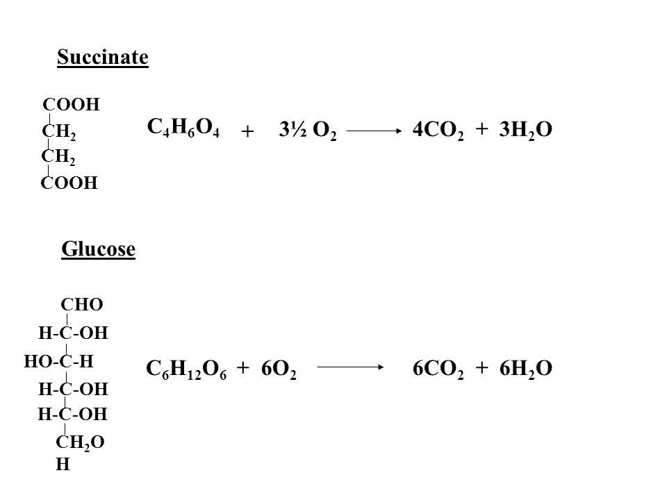 Succinate C4H6O4 3½ O2 4CO2 + 3H2O + Glucose C6H12O6 + 6O2 6CO2 + 6H2O