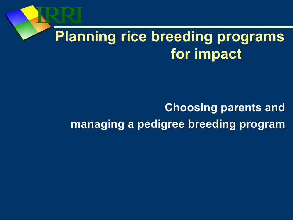 Planning rice breeding programs for impact