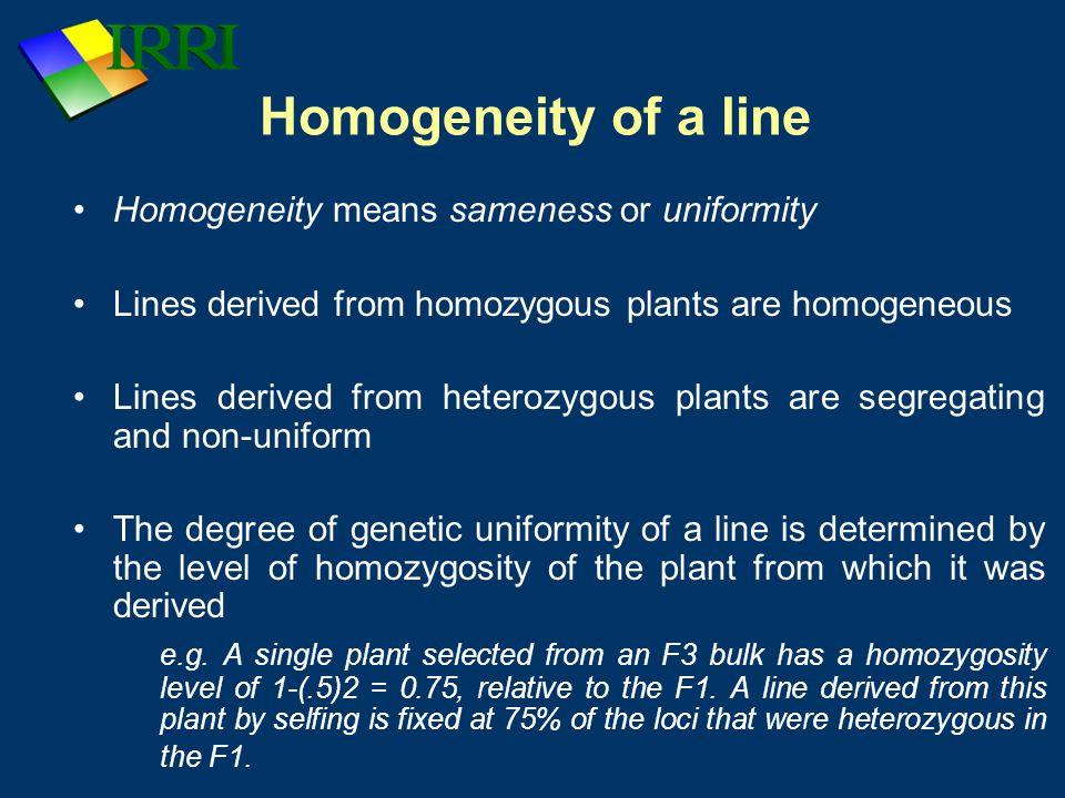 Homogeneity of a line Homogeneity means sameness or uniformity