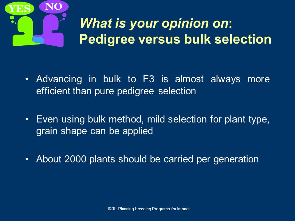What is your opinion on: Pedigree versus bulk selection
