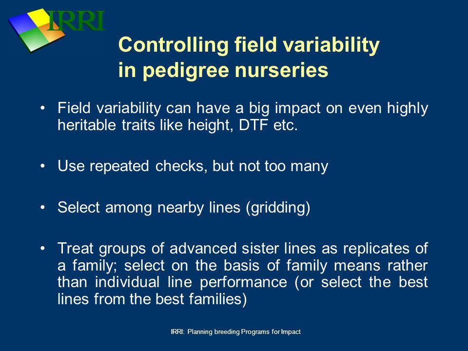 Controlling field variability in pedigree nurseries