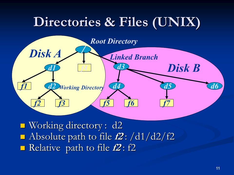 Directories & Files (UNIX)