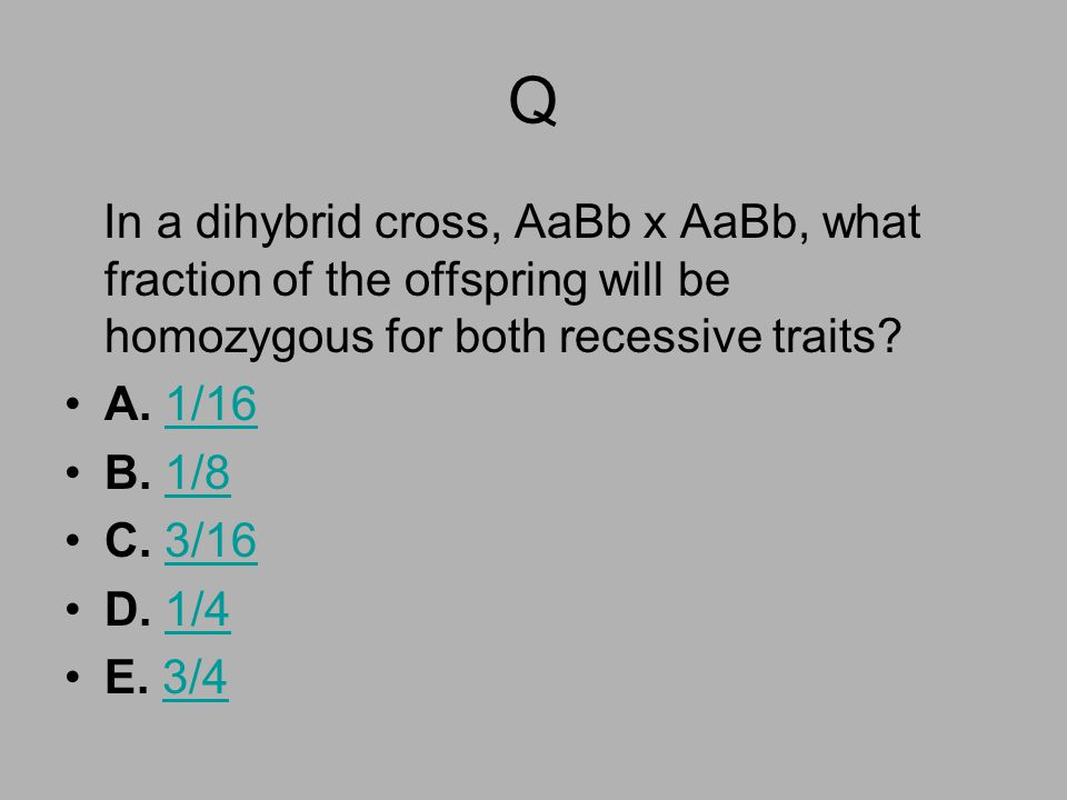 Q In a dihybrid cross, AaBb x AaBb, what fraction of the offspring will be homozygous for both recessive traits