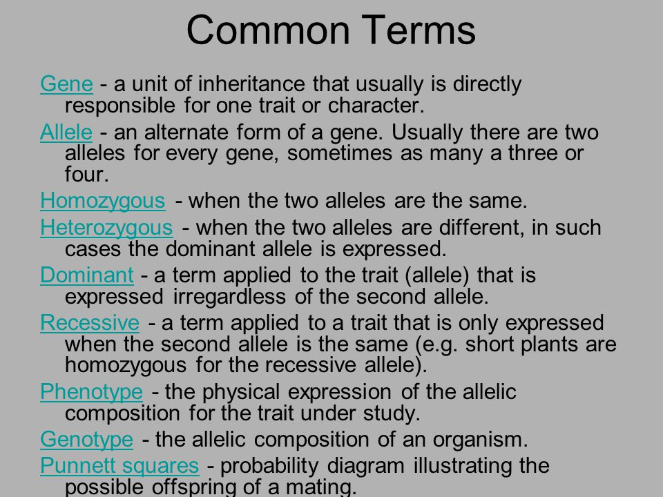 Common Terms Gene - a unit of inheritance that usually is directly responsible for one trait or character.