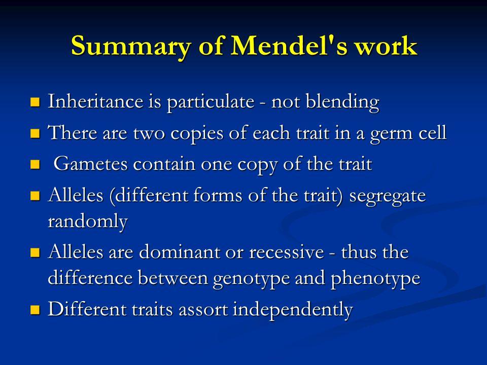 Summary of Mendel s work