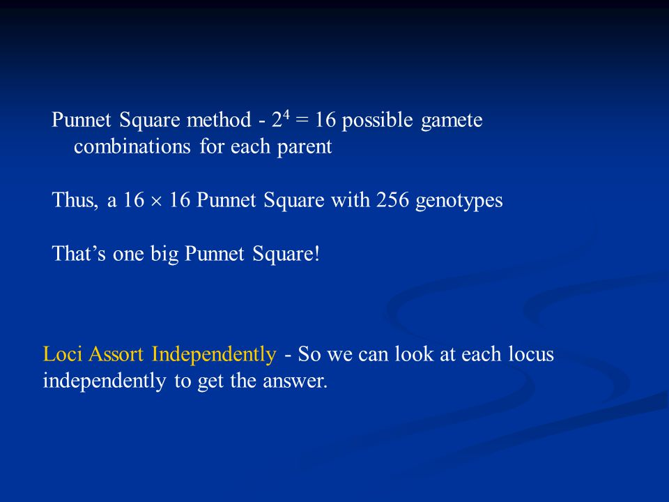 Punnet Square method - 24 = 16 possible gamete