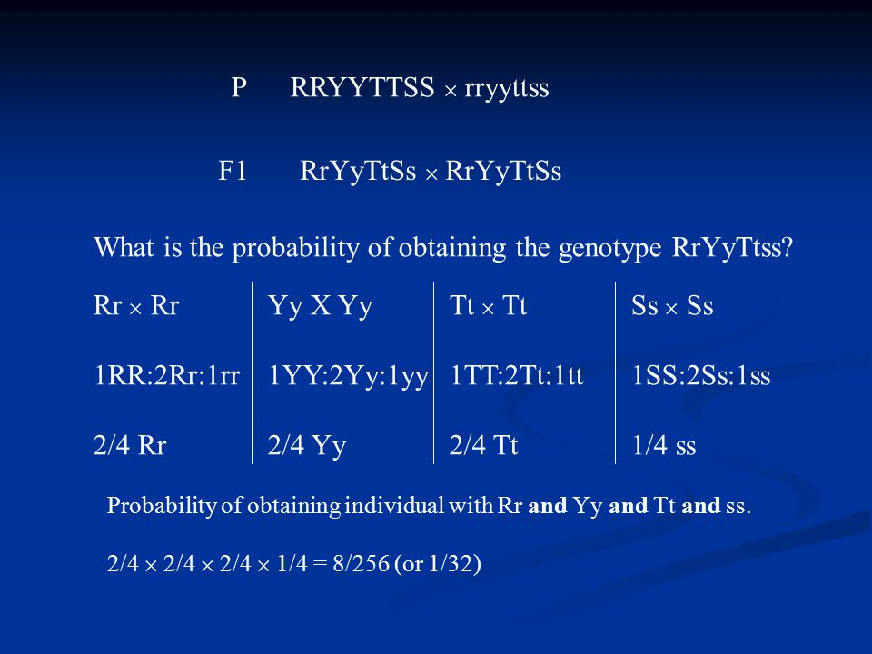 What is the probability of obtaining the genotype RrYyTtss