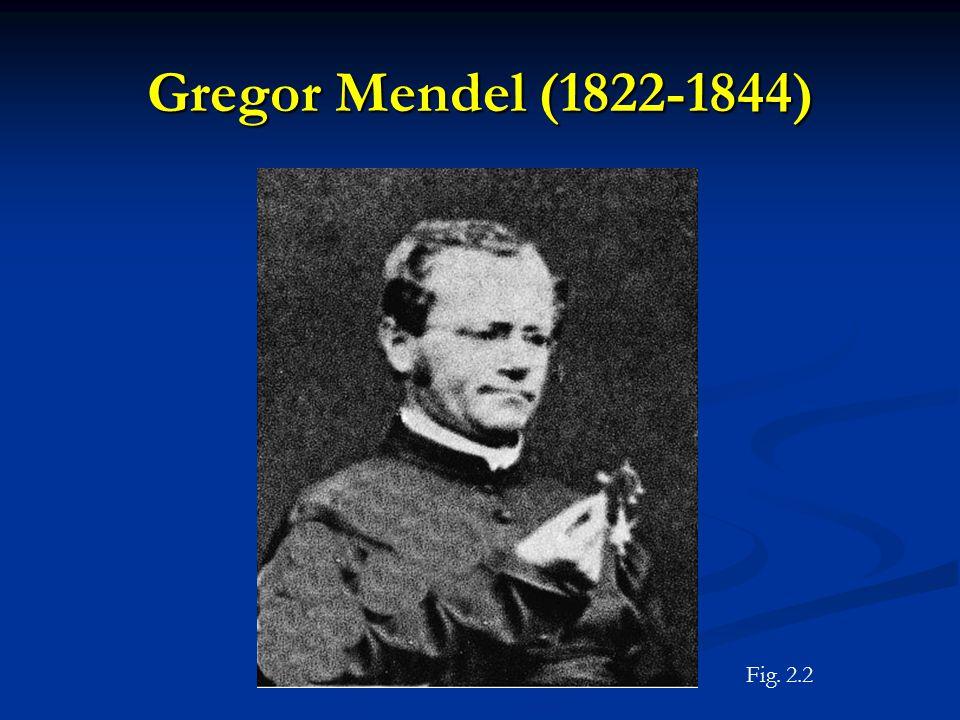 Gregor Mendel (1822-1844) Figure 2.2 Fig. 2.2