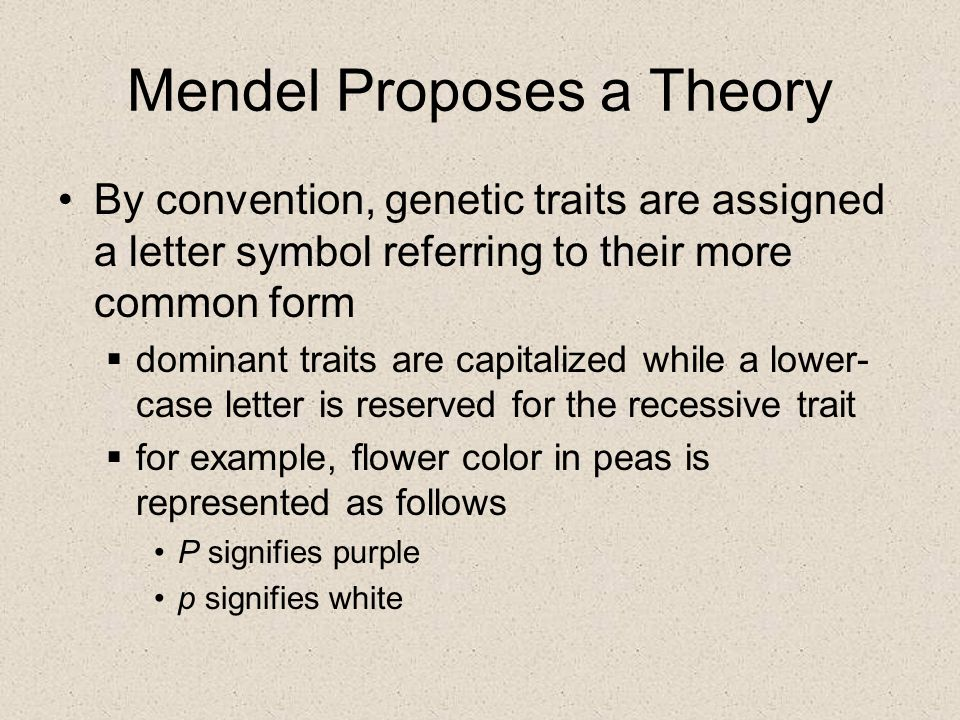 Mendel Proposes a Theory