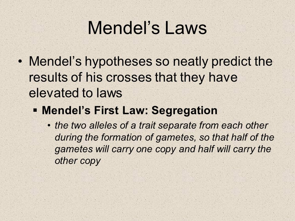Mendel's Laws Mendel's hypotheses so neatly predict the results of his crosses that they have elevated to laws.
