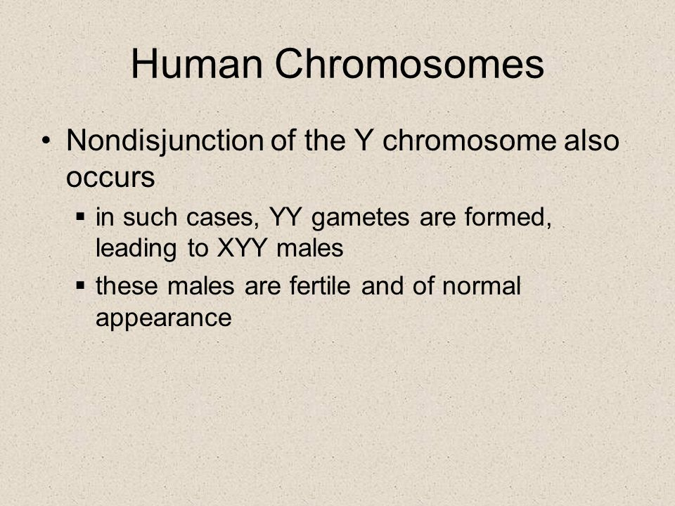 Human Chromosomes Nondisjunction of the Y chromosome also occurs