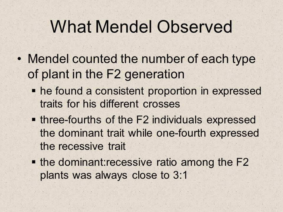 What Mendel Observed Mendel counted the number of each type of plant in the F2 generation.