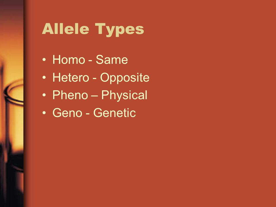 Allele Types Homo - Same Hetero - Opposite Pheno – Physical