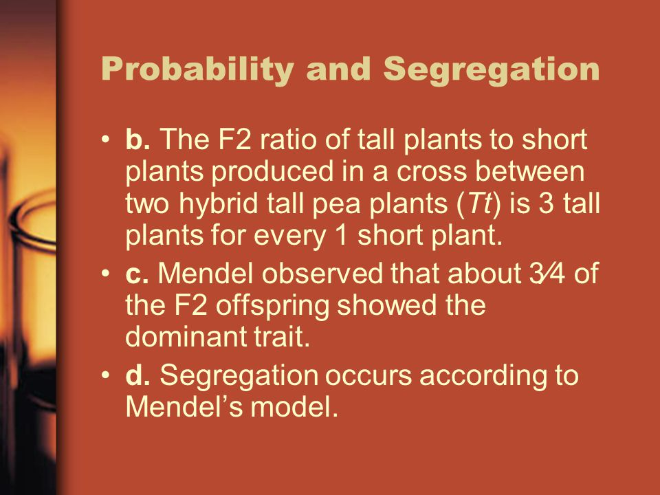 Probability and Segregation