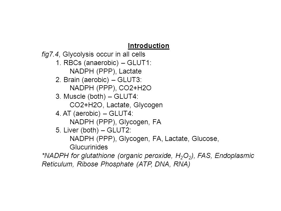 Introduction fig7.4, Glycolysis occur in all cells. 1. RBCs (anaerobic) – GLUT1: NADPH (PPP), Lactate.