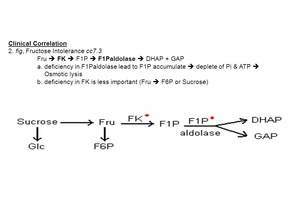 Clinical Correlation 2. fig, Fructose Intolerance cc7.3. Fru  FK  F1P  F1Paldolase  DHAP + GAP.