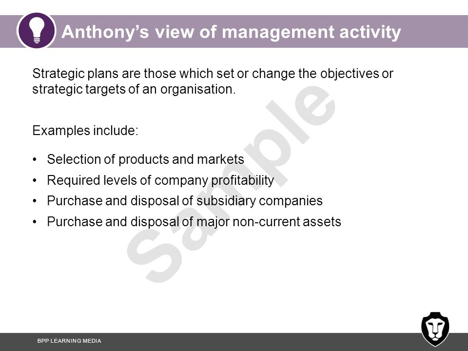 Anthony's view of management activity