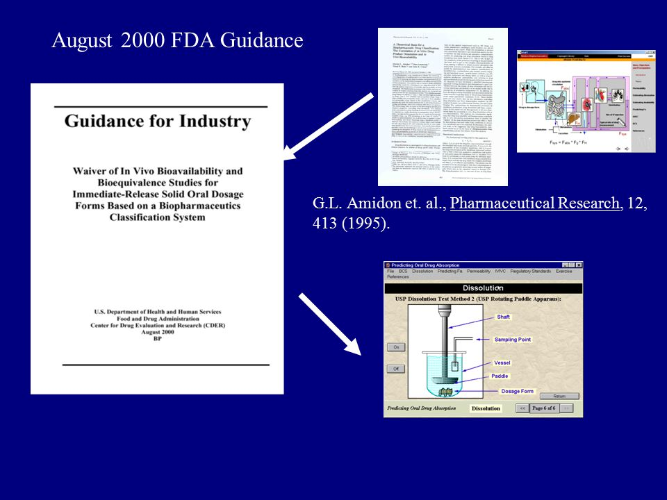 August 2000 FDA Guidance G.L. Amidon et. al., Pharmaceutical Research, 12, 413 (1995).