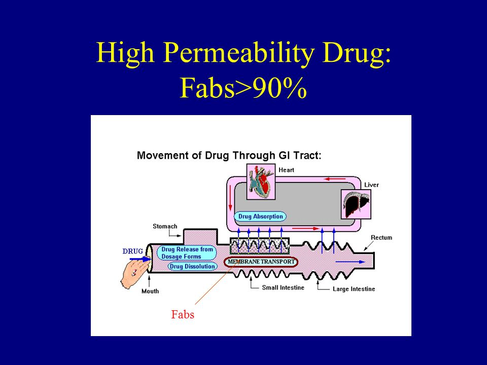High Permeability Drug: Fabs>90%