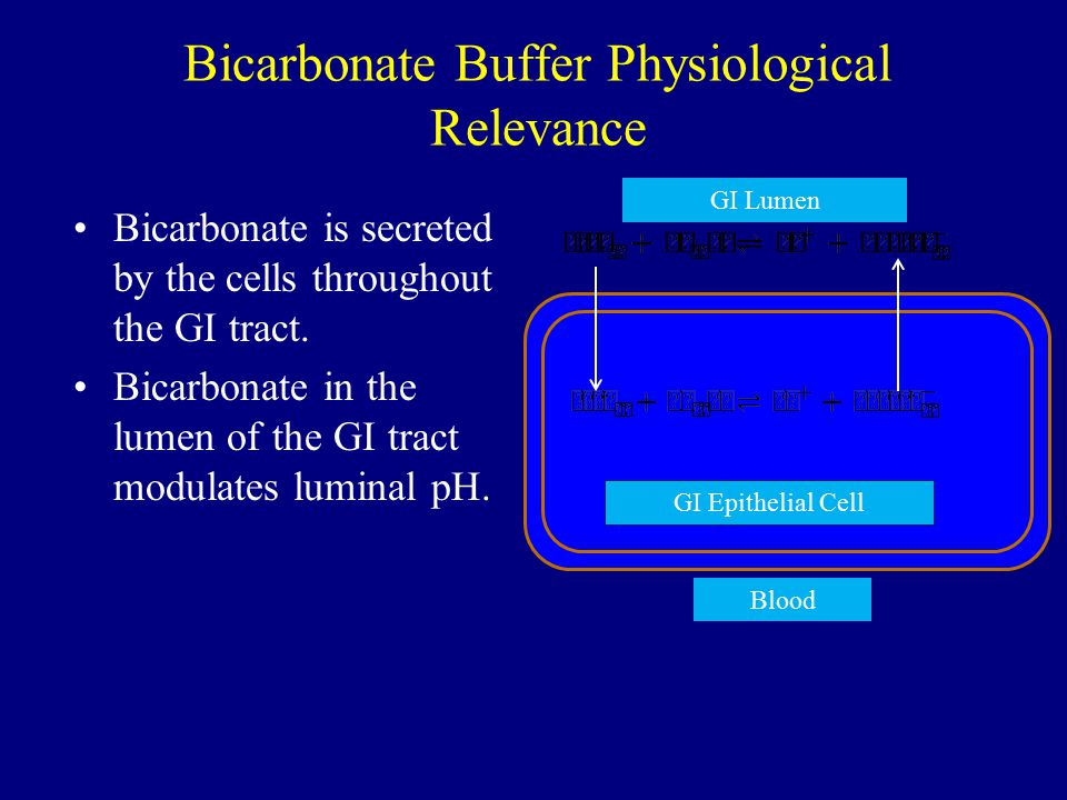 Bicarbonate Buffer Physiological Relevance