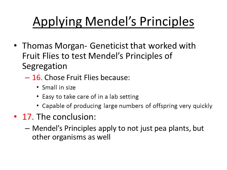 Applying Mendel's Principles