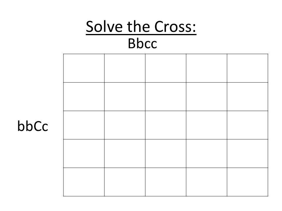 Solve the Cross: Bbcc bbCc