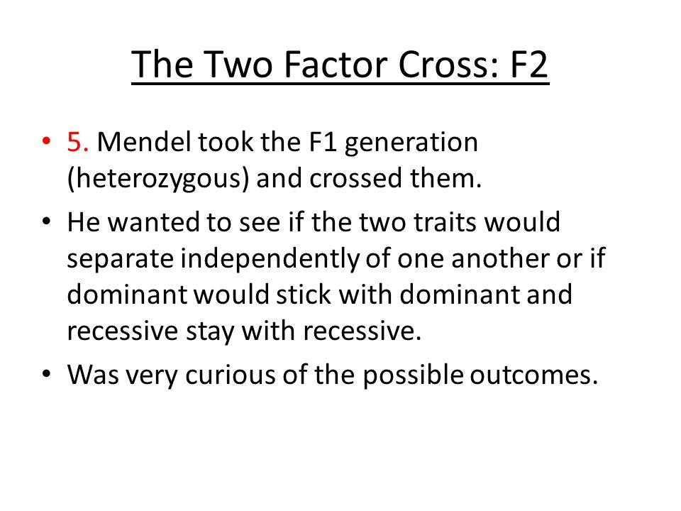 The Two Factor Cross: F2 5. Mendel took the F1 generation (heterozygous) and crossed them.