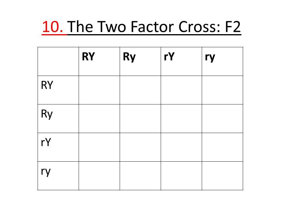 10. The Two Factor Cross: F2 RY Ry rY ry
